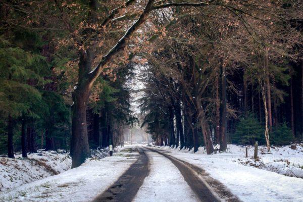 winter snow on road